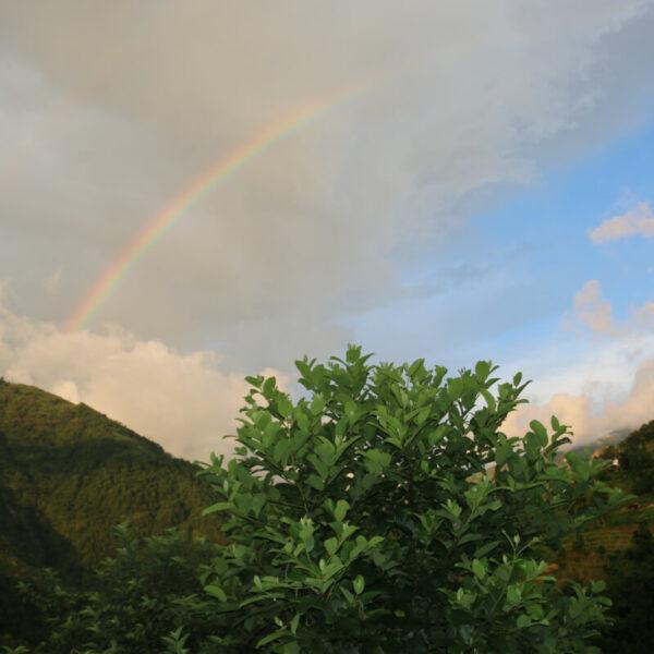Regenbogen über Gaujini